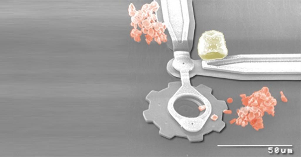 Globulo rojo y un micro mecanismo